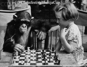 chessfestivalBaltijostaure2